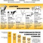 Jaket Kulit Sapi dan Domba: Beda Kulit Sapi vs Domba Lengkap