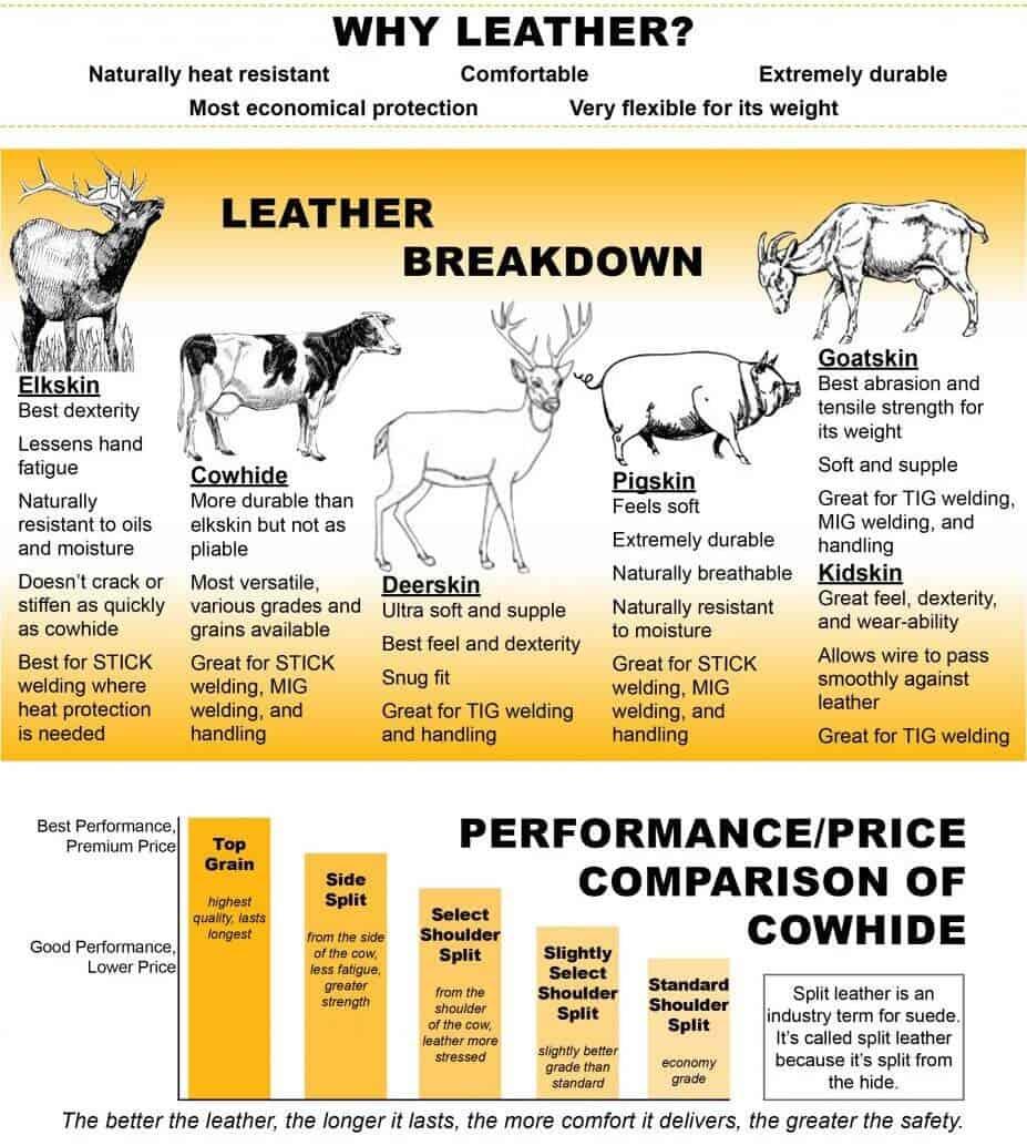 Jaket Kulit Sapi dan Domba  Daftar Perbedaan Kulit Domba vs Sapi 6824ecd970