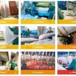 Penyamakan Kulit, Pengertian, Jenis & Tahapan Proses di Industri